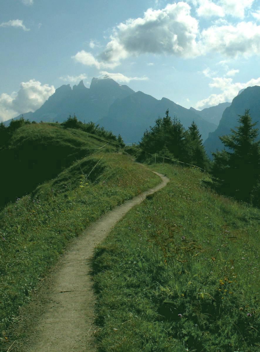 chemin de montagne symbolisant le coaching