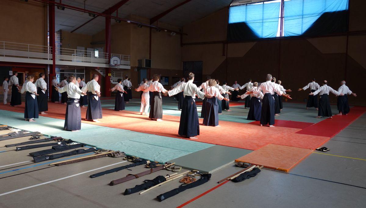 Aikido summer 2014